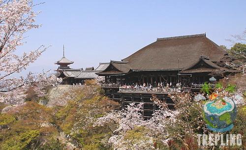 7 Kuil Yang Wajib Dikunjungi Di Kyoto