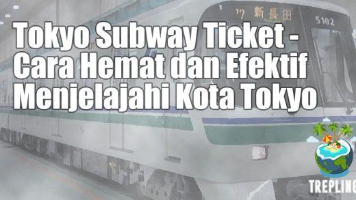 tokyo metro subway ticket