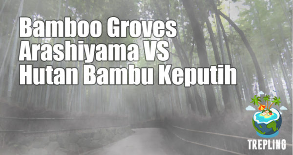 Bamboo Groves Arashiyama vs Hutan Bambu Keputih